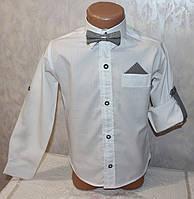 Рубашка нарядная на мальчика с бабочкой  (рукав трансформер) 10,11,12,13 лет