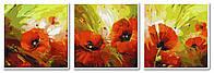 Картина для рисования Турбо Триптих Маковый цвет (VPT009) 50 х 150 см