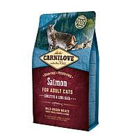 CarniLove Salmon for Adult Cats беззерновой корм с лососем для взрослых кошек, 6 кг