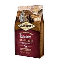 CarniLove Reindeer for Adult Cats беззерновой корм с мясом северного оленя для активных кошек, 6 кг