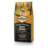 CarniLove (Карнилав) Salmon & Turkey for Large Breed Adult беззерновой корм для собак крупных пород, 1.5 кг