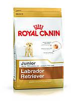 Royal Canin (Роял Канин) Labrador Retriever Junior корм для щенков лабрадора ретривера до 15 месяцев, 12 кг