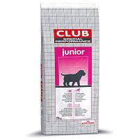 Royal Canin Club PRO Junior корм для щенков, а также для беременных сук, 20 кг