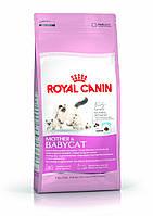 Royal Canin (Роял Канин) Mother & Babycat корм для котят и беременных/кормящих кошек, 400 г