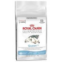 Royal Canin (Роял Канин) Queen 34 корм для кошек в период течки, беременности и лактации, 4 кг