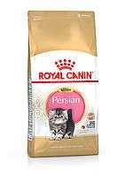 Royal Canin (Роял Канін) Kitten Persian корм для кошенят перської кішки, 10 кг