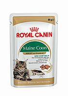 Royal Canin Maine Coon в соусе для кошек породы мейн-кун, 12 шт