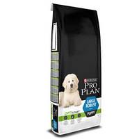 Pro Plan (Про План) Puppy Large Robust Корм для щенков крупных пород, 3 кг