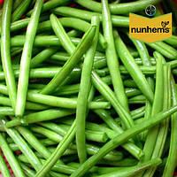 Фасоль Нагано / Nagano от Нунемс (Nunhems), Голландия, 100 000 семян