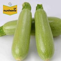 Кабачок Аймаран F1 / Aymaran F1 от Нунемс (Nunhems), Голландия, 1000 семян