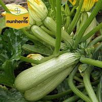 Кабачок Сангрум F1 / Sangrum F1 от Нунемс (Nunhems), Голландия, 1000 семян