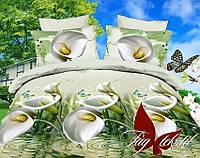 Комплект постельного белья 2-спальный ТМ TAG  MS-CY14068