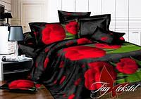 Комплект постельного белья 2-спальный ТМ TAG  MS-CY14139