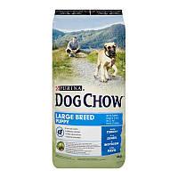АКЦИЯ! DOG CHOW Puppy Large Breed.З індичкою.Для великих порід,сух 14кг