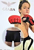 Трусы боксеры на подростка № G 122 (уп. 12 шт.)