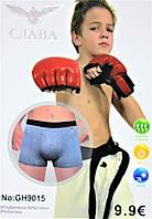 Трусы боксеры на подростка № GH 9015 (уп. 12 шт.)