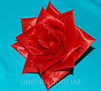 Ф-19/1  Роза осктроконечная 12 см, фото 1