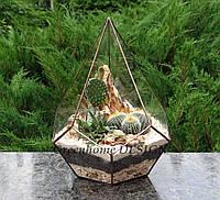 """Флорариум геометрический """"Пятиугольная пирамида"""", с кактусами"""