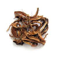 Красный корень (копеечник белковый) 30 гр