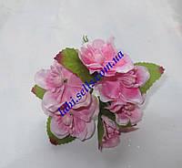 Цветы яблони 6шт