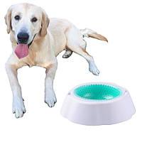 Охлаждающая миска для воды для животных Frosty Bowl, фото 1