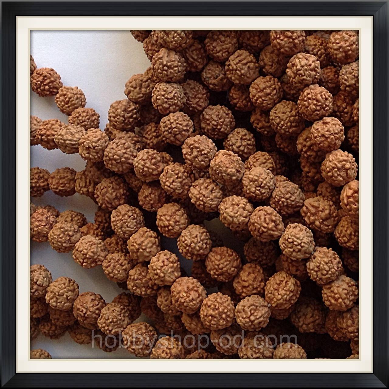 Намистини-горіхи Рудракша 1 см (108 шт)