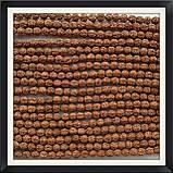 Намистини-горіхи Рудракша 1 см (108 шт), фото 3