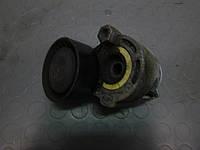 Натяжитель ремня Renault Scenic II 03-06 (Рено Сценик 2), 117503662R
