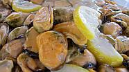 Мидии в масле с лимоном. Ведро 3 кг, фото 2