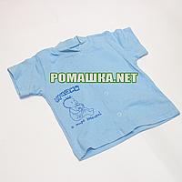 Детская кофточка р. 74 с коротким рукавом ткань КУЛИР 100% тонкий хлопок ТМ Алекс 3174 Голубой