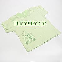 Детская кофточка р. 74 с коротким рукавом ткань КУЛИР 100% тонкий хлопок ТМ Алекс 3174 Зеленый