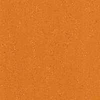 DLW PUR 137-170 kumquat orange Colorette 2.5 мм натуральный линолеум
