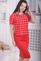 Костюм летний кофта и юбка карандаш красный в клетку, фото 1