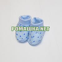Пинетки  для новорожденного р. 56-62, демисезонные 100% хлопок ТМ Малина 3739 Голубой