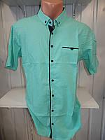 Рубашка мужская  CROM стрейч, полу-батал заклепки узор шахматка 001 \ купить рубашку оптом.