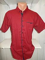 Рубашка мужская  CROM стрейч, полу-батал заклепки узор шахматка 004 \ купить рубашку оптом.