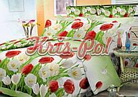 """Евро двуспальное постельное белье Бязь/Голд комплект 180*220 """"Тюльпаны"""""""