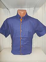Рубашка мужская  Sinyor стрейч, заклепки мелкий узор 002 \ купить рубашку оптом.