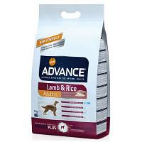 Advance ADULT Lamb & Rice - корм для взрослых собак (ягненок/рис) 12 кг