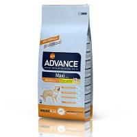 Advance MAXI Adult - корм для собак крупных пород 18 кг