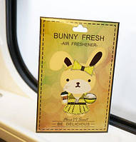 """Стильный парфюмированный ароматизатор авто/гардероб """"Be Delicious by DKNY """" женский"""