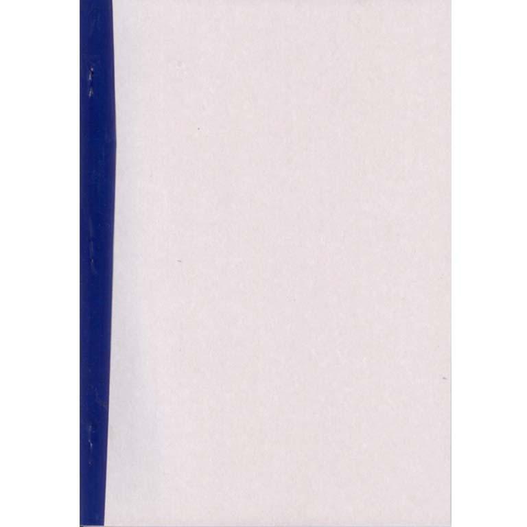 Бухгалтерская книга * 48л А4 Журнал (пустографка) 48л, газетка