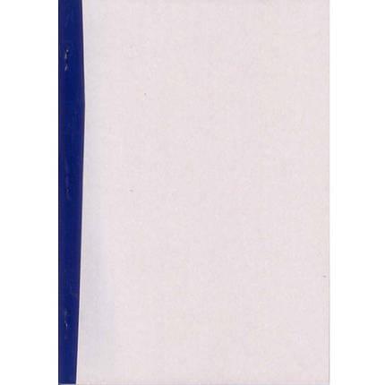 Бухгалтерская книга * 48л А4 Журнал (пустографка) 48л, газетка, фото 2