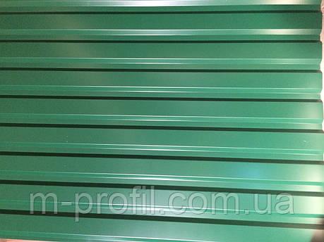 Профнастил ПС-20 цветной 0,4, фото 2