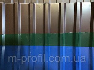 Профнастил ПК-20 цветной 0,33, фото 2