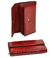 Кошелек Rose кожа Alessandro Paoli WS-516 red, кошелек недорогой, на подарок