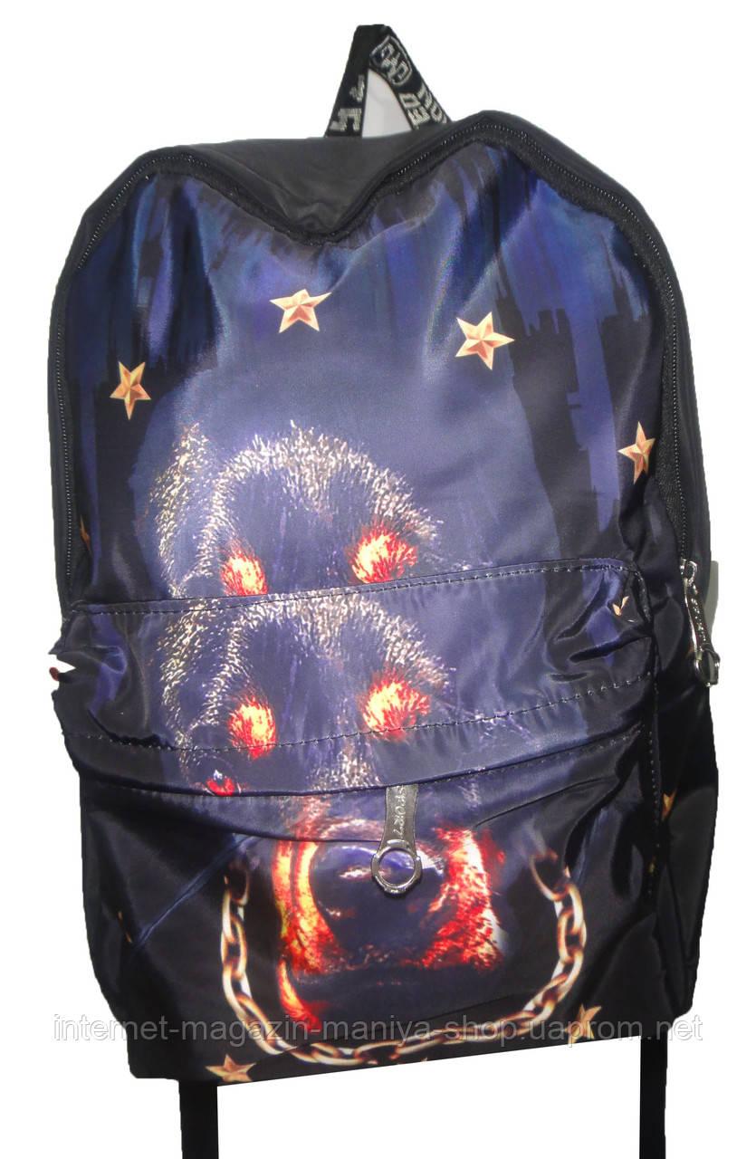 Рюкзак для мальчика 100-4 собака карман