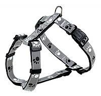 Шлея Trixie Silver Reflect H-Harness для собак нейлоновая, светоотражающая, 75-100 см