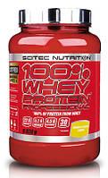 Scitec Nutrition 100% Whey Protein Prof шоколад рокки роуд