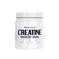 Creatine Muscle Max - 500g - All Nutrition